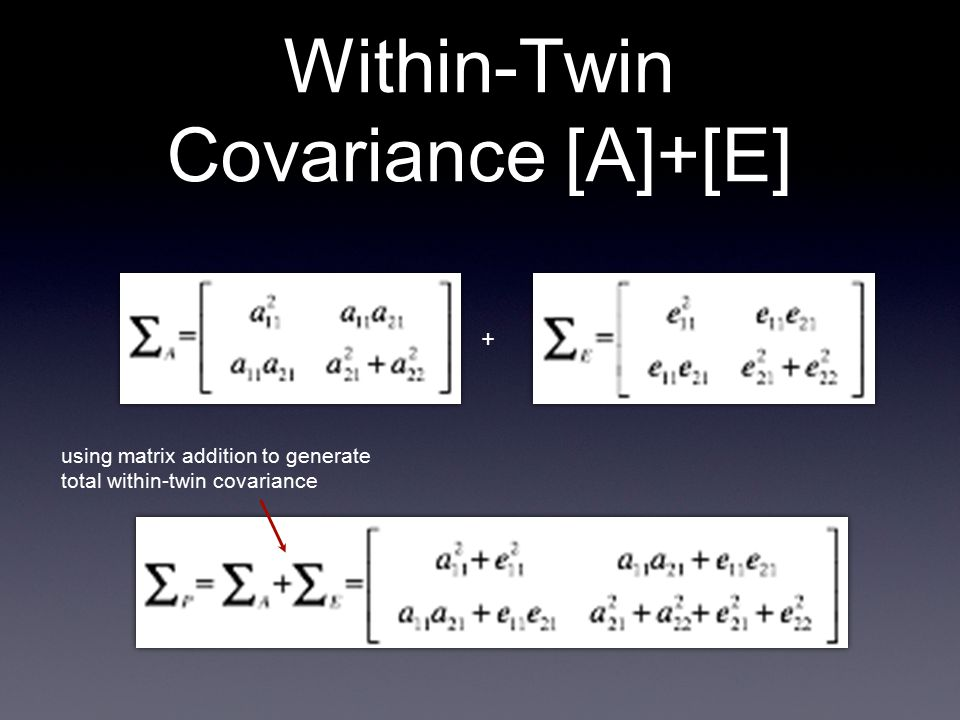 Within-Twin Covariance [A]+[E] + using matrix addition to generate total within-twin covariance