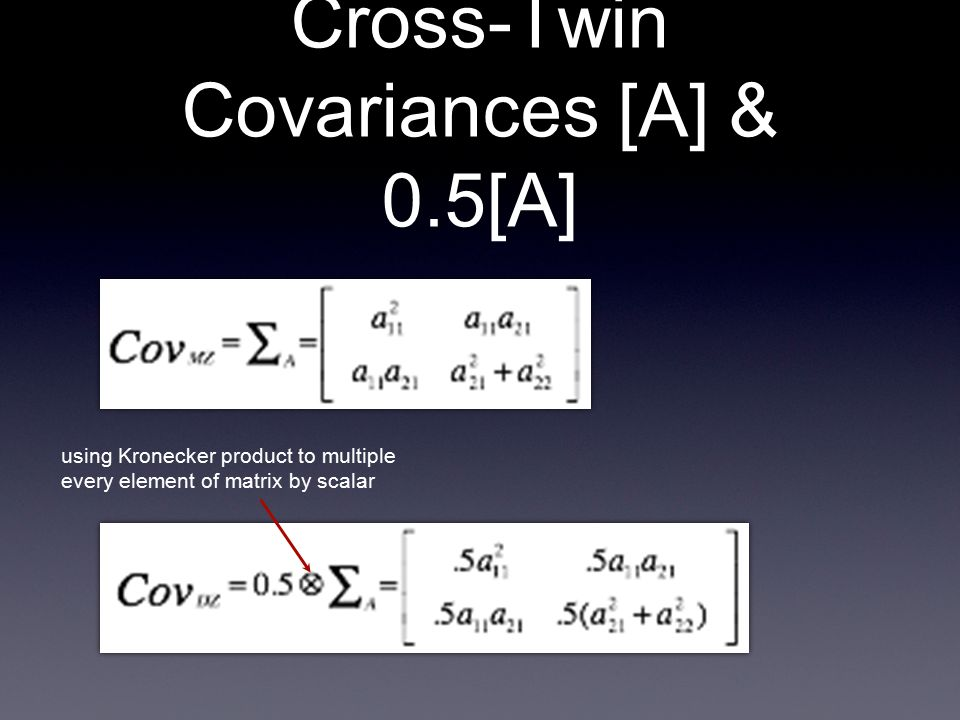 Cross-Twin Covariances [A] & 0.5[A] + using Kronecker product to multiple every element of matrix by scalar