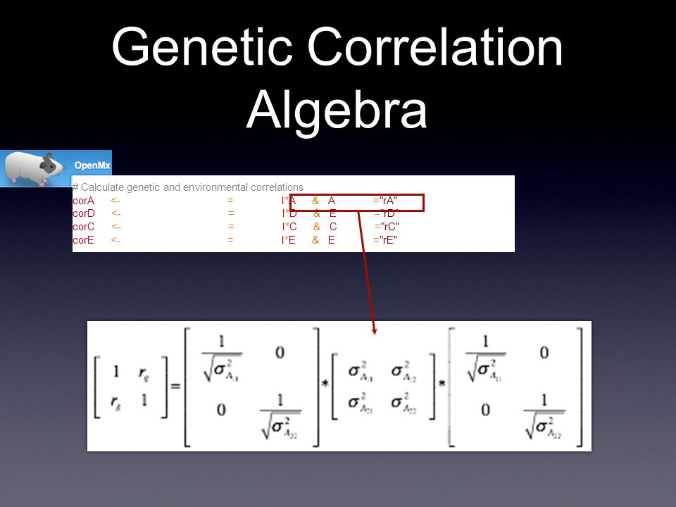 # Calculate genetic and environmental correlations corA <- mxAlgebra( expression=solve(sqrt(I*A))%&%A), name = rA ) corD <- mxAlgebra( expression=solve(sqrt(I*D))%&%E), name = rD ) corC <- mxAlgebra( expression=solve(sqrt(I*C))%&%C), name = rC ) corE <- mxAlgebra( expression=solve(sqrt(I*E))%&%E), name = rE ) Genetic Correlation Algebra