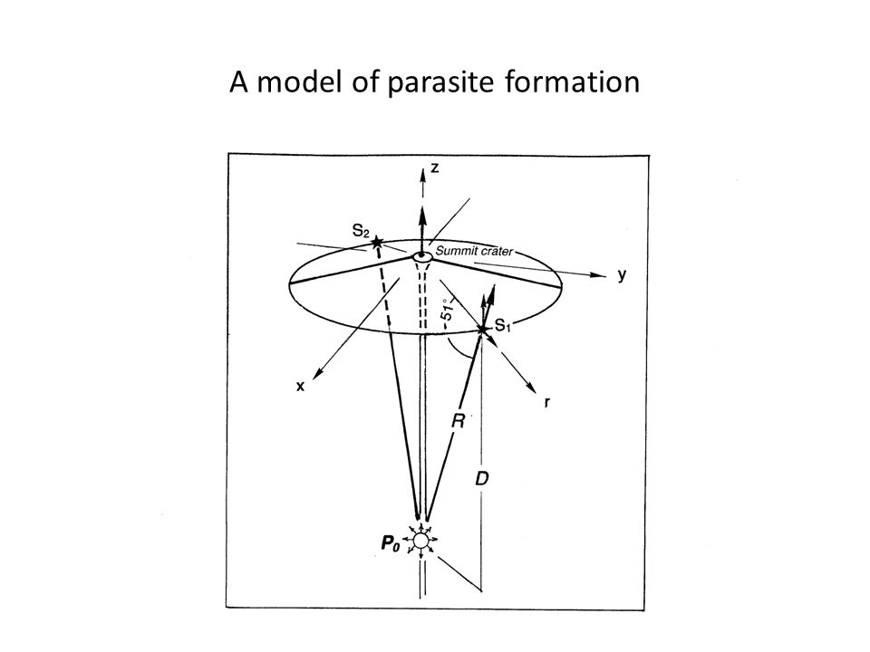 A model of parasite formation
