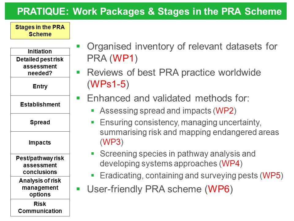 PRATIQUE: Work Packages & Stages in the PRA Scheme Detailed pest risk assessment needed? Establishment Spread Entry Analysis of risk management option
