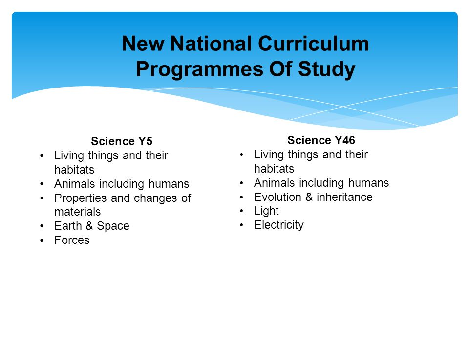 New National Curriculum Programmes Of Study Science Y5 Living things and their habitats Animals including humans Properties and changes of materials Earth & Space Forces Science Y46 Living things and their habitats Animals including humans Evolution & inheritance Light Electricity