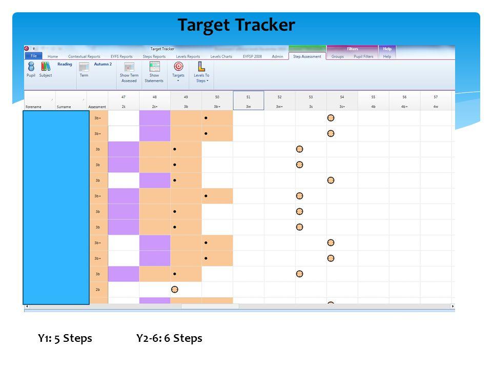 Target Tracker Y1: 5 StepsY2-6: 6 Steps
