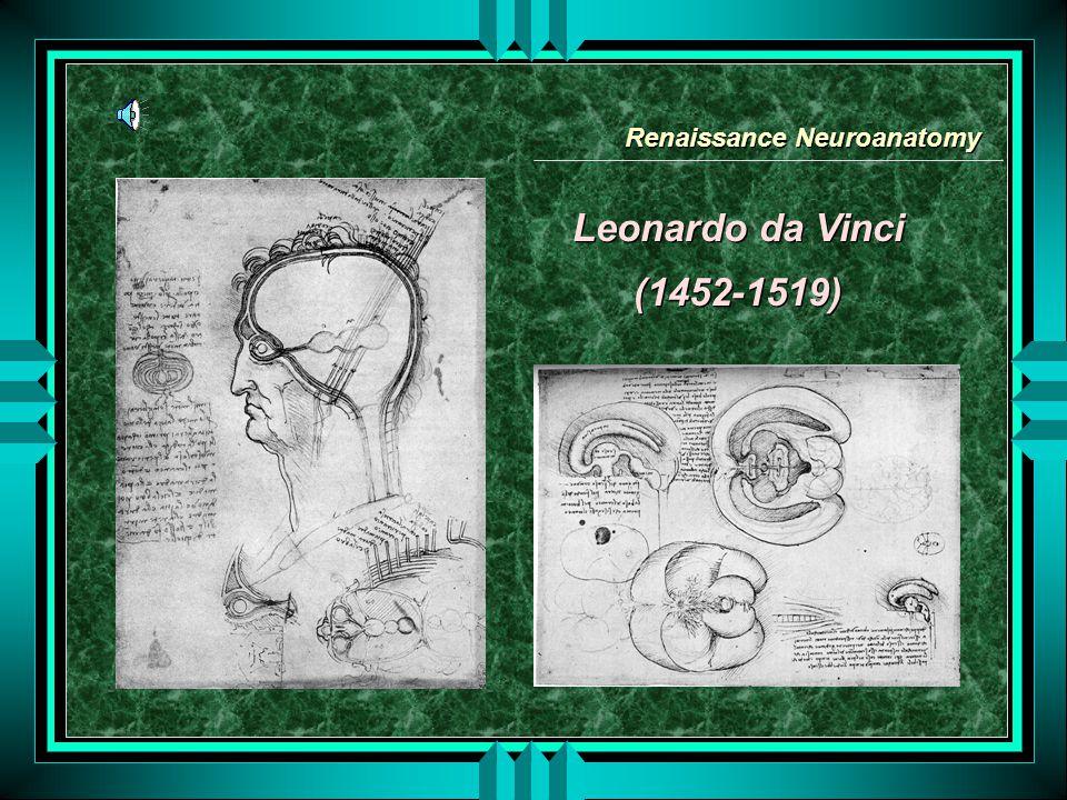 Leonardo da Vinci (1452-1519) Leonardo da Vinci (1452-1519) Renaissance Neuroanatomy
