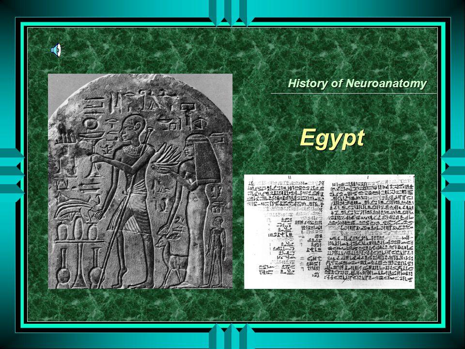 Egypt History of Neuroanatomy
