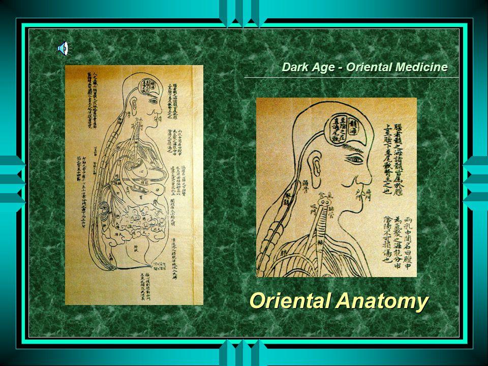 Oriental Anatomy Dark Age - Oriental Medicine