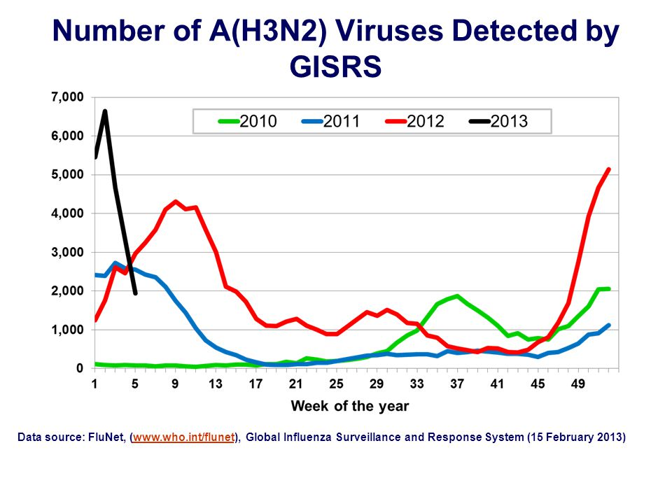 Number of A(H3N2) Viruses Detected by GISRS Data source: FluNet, (  Global Influenza Surveillance and Response System (15 February 2013)
