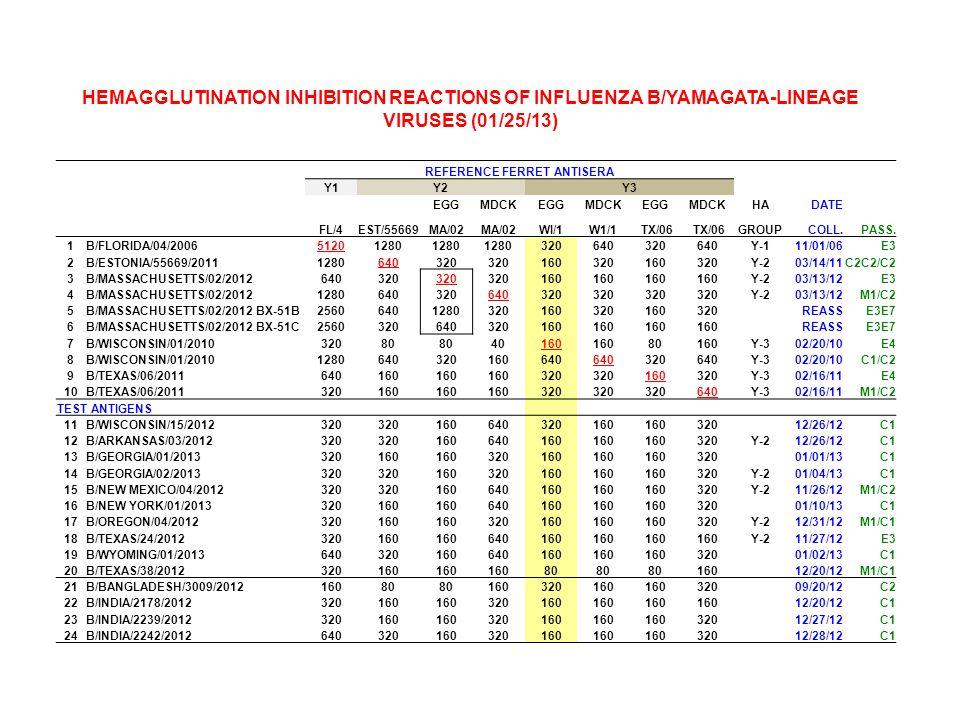 REFERENCE FERRET ANTISERA Y1Y2Y3 EGGMDCKEGGMDCKEGGMDCKHADATE FL/4EST/55669MA/02 WI/1W1/1 TX/06 GROUPCOLL.PASS.