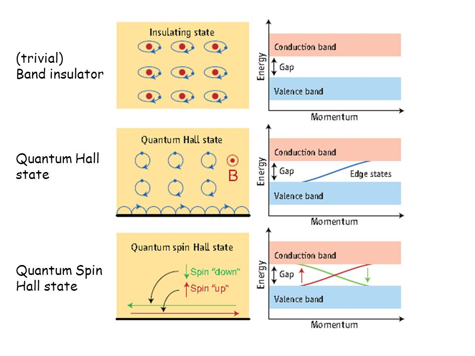 (trivial) Band insulator Quantum Spin Hall state Quantum Hall state