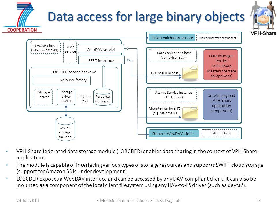 P-Medicine Summer School, Schloss Dagstuhl1224 Jun 2013 Data access for large binary objects LOBCDER host (149.156.10.143) LOBCDER service backend Res