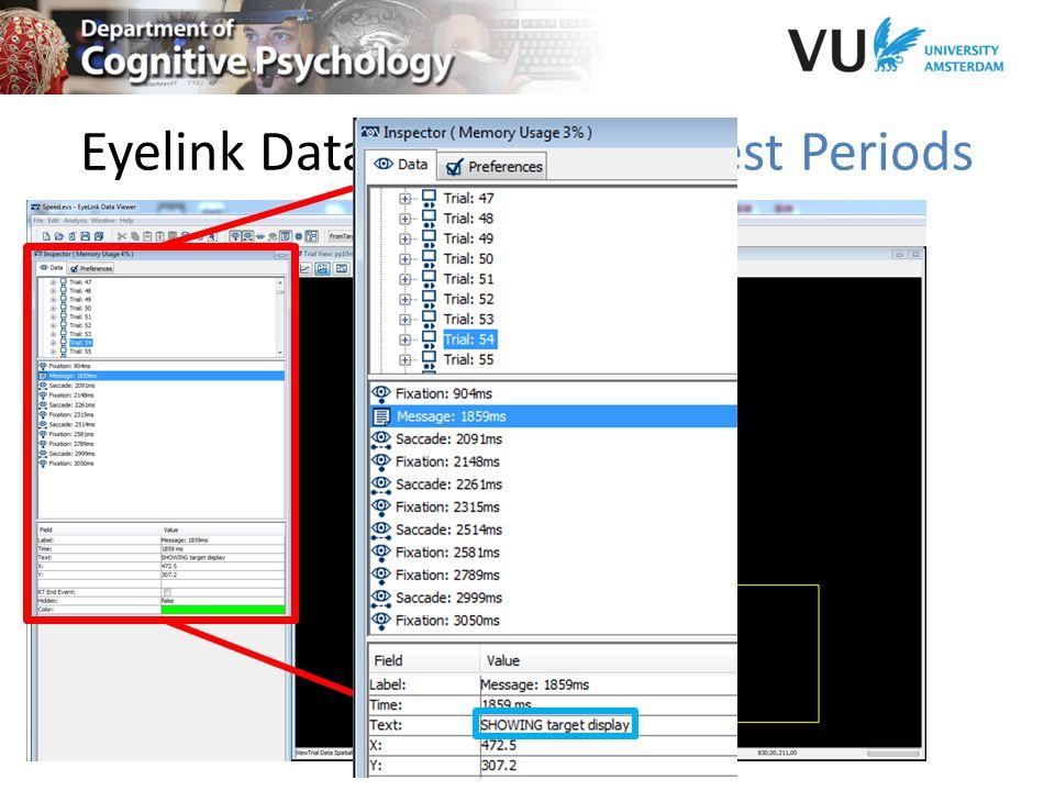 Eyelink Data Viewer | Interest Periods