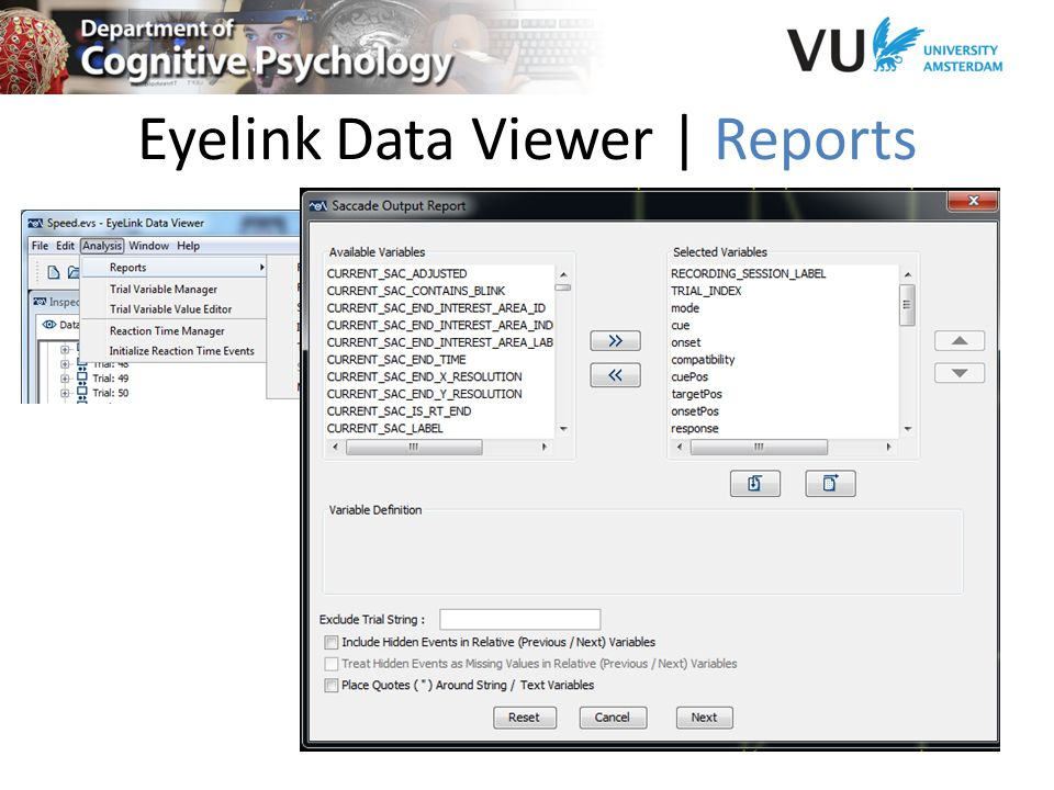 Eyelink Data Viewer | Reports