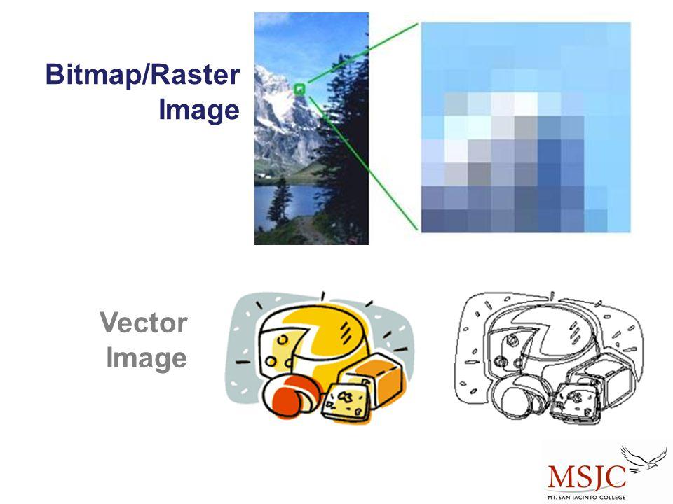 Bitmap/Raster Image Vector Image