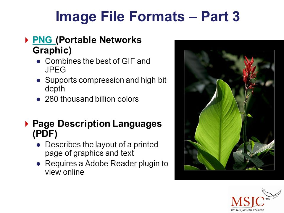 Image File Formats – Part 3  PNG (Portable Networks Graphic) PNG Combines the best of GIF and JPEG Supports compression and high bit depth 280 thousa