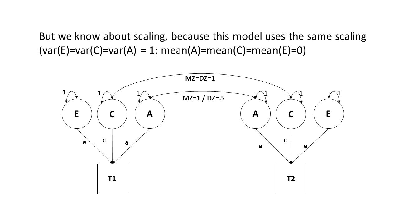 E C A T1 e a c A C E T2 a e c MZ=DZ=1 MZ=1 / DZ=.5 1 1 111 1 But we know about scaling, because this model uses the same scaling (var(E)=var(C)=var(A)