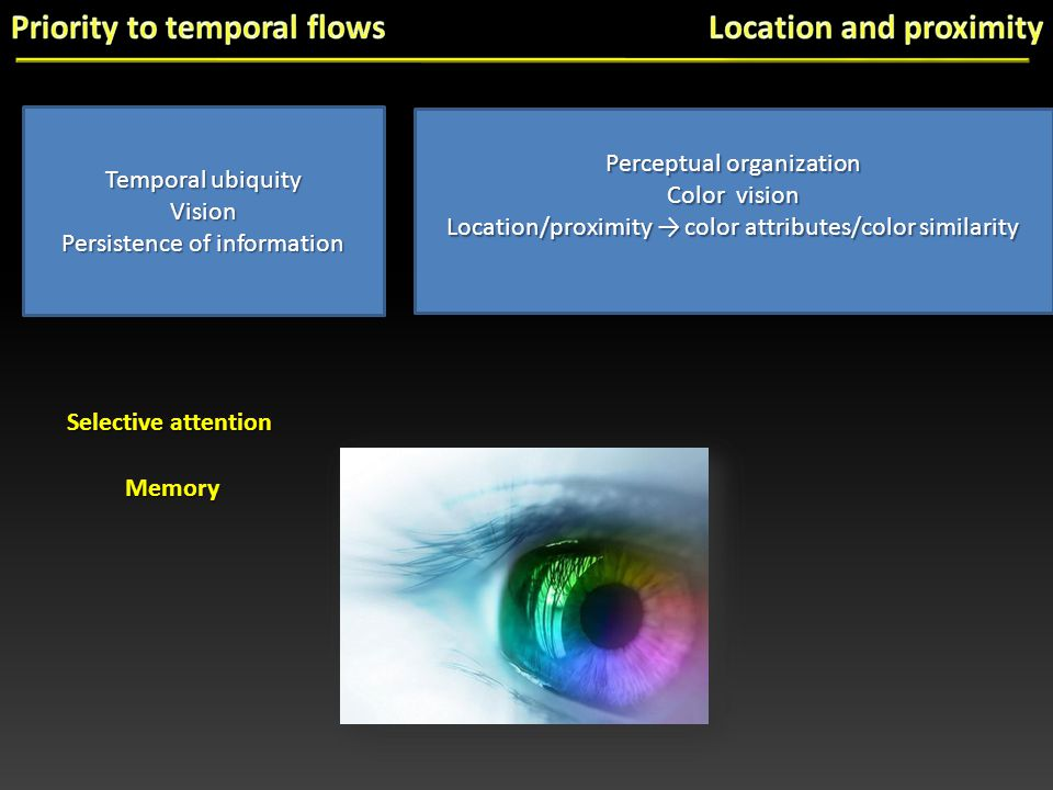 Perceptual organization Color vision Location/proximity → color attributes/color similarity Temporal ubiquity Vision Persistence of information Selective attention Memory