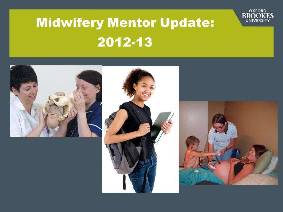 Midwifery Mentor Update: 2012-13