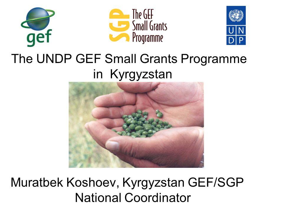 The UNDP GEF Small Grants Programme in Kyrgyzstan Muratbek Koshoev, Kyrgyzstan GEF/SGP National Coordinator
