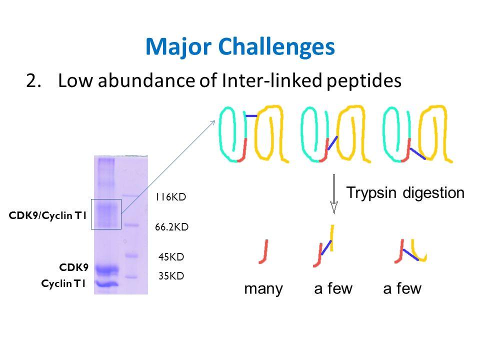 Major Challenges 3.Highly complex MS2 spectra Regular peptidesCrosslinked peptides