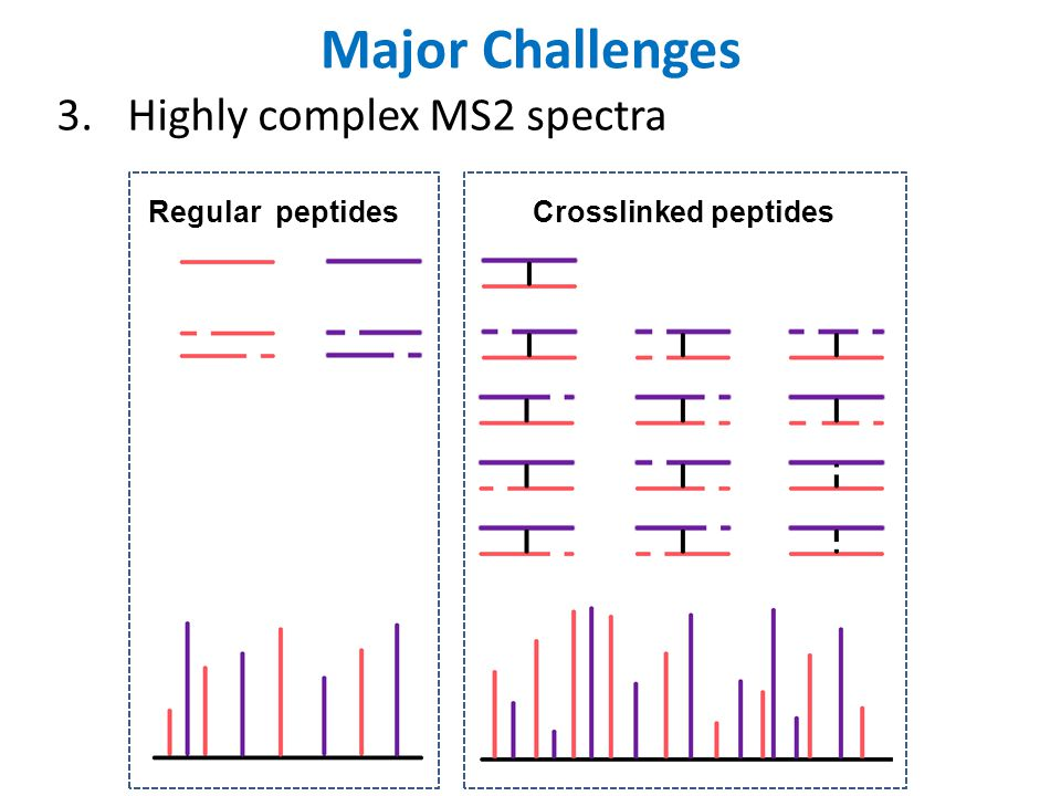 Major Challenges 4.Database can be huge If the routine search space is 100 peptides, the crosslink search space is 5,050 pairs.