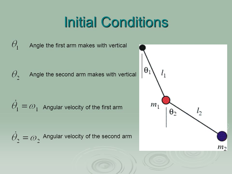 Initial Conditions Angle the first arm makes with vertical Angle the second arm makes with vertical Angular velocity of the first arm Angular velocity of the second arm