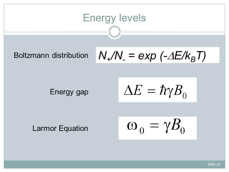 slide 12 Energy levels Larmor Equation Energy gap N + /N - = exp (-  E/k B T) Boltzmann distribution