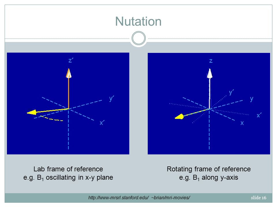 slide 16 Nutation Lab frame of reference e.g.