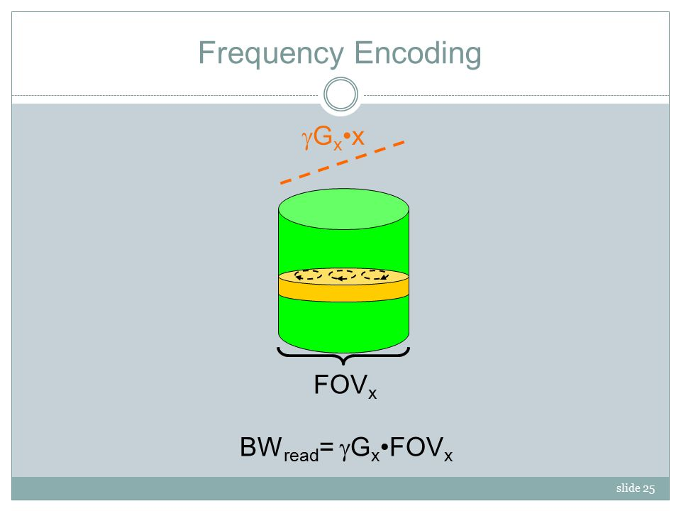 slide 25 Frequency Encoding MzMz GxxGxx BW read =  G xFOV x FOV x