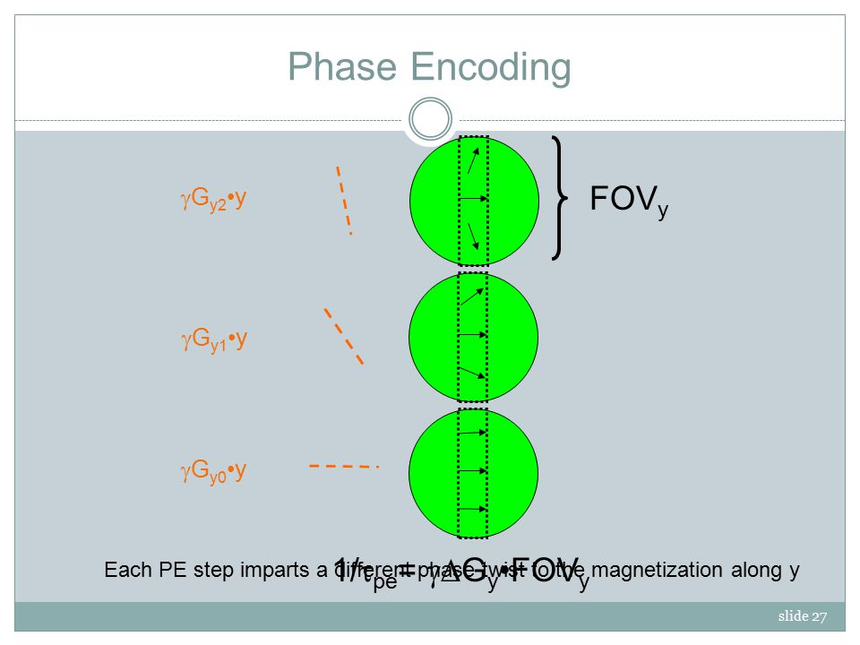 slide 27 Phase Encoding  G y2 y 1/  pe =  G yFOV y FOV y  G y1 y  G y0 y Each PE step imparts a different phase twist to the magnetization along y