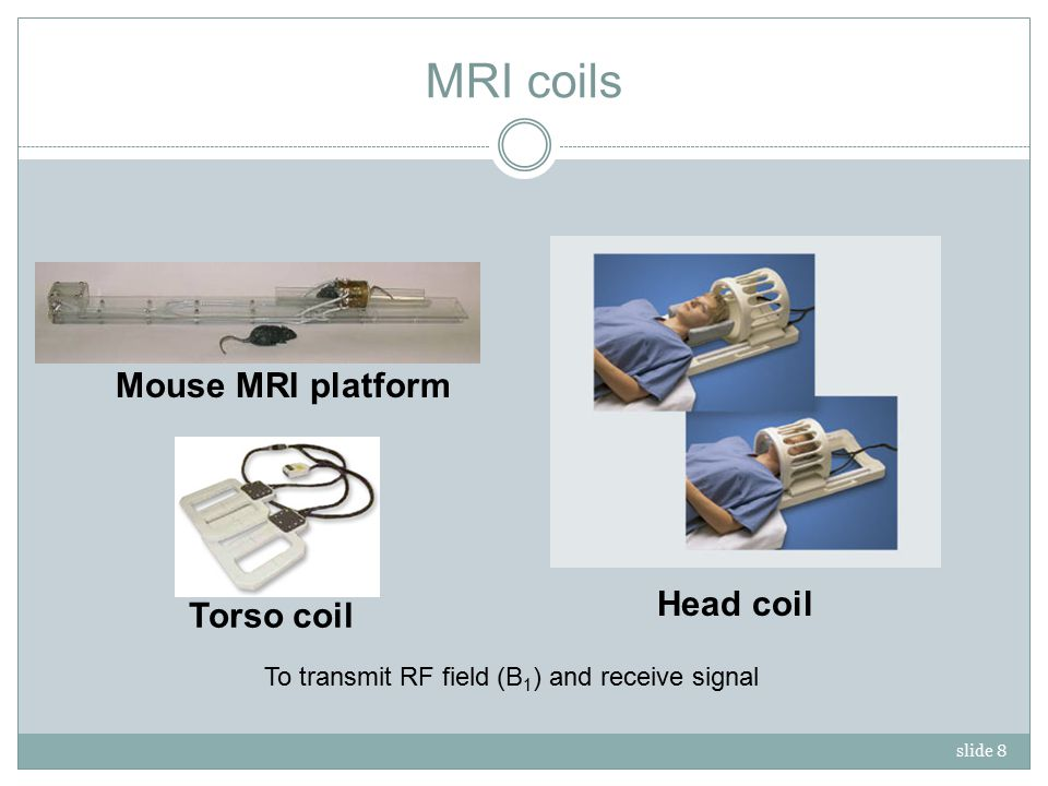 slide 8 MRI coils Head coil Mouse MRI platform Torso coil To transmit RF field (B 1 ) and receive signal