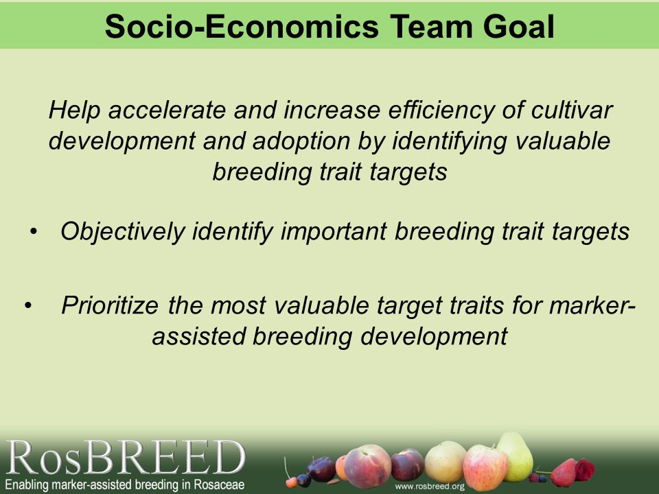 Objectively identify important breeding trait targets Prioritize the most valuable target traits for marker- assisted breeding development Help accelerate and increase efficiency of cultivar development and adoption by identifying valuable breeding trait targets Socio-Economics Team Goal