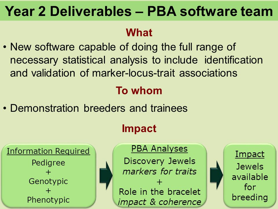 What To whom Year 2 Deliverables – PBA software team Impact New software capable of doing the full range of necessary statistical analysis to include identification and validation of marker-locus-trait associations Demonstration breeders and trainees Information Required Pedigree + Genotypic + Phenotypic Information Required Pedigree + Genotypic + Phenotypic PBA Analyses Discovery Jewels markers for traits + Role in the bracelet impact & coherence PBA Analyses Discovery Jewels markers for traits + Role in the bracelet impact & coherence Impact Jewels available for breeding Impact Jewels available for breeding