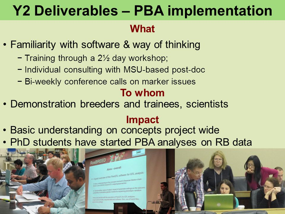 What To whom Y2 Deliverables – PBA implementation Impact Familiarity with software & way of thinking −Training through a 2½ day workshop; −Individual consulting with MSU-based post-doc −Bi-weekly conference calls on marker issues Demonstration breeders and trainees, scientists Basic understanding on concepts project wide PhD students have started PBA analyses on RB data