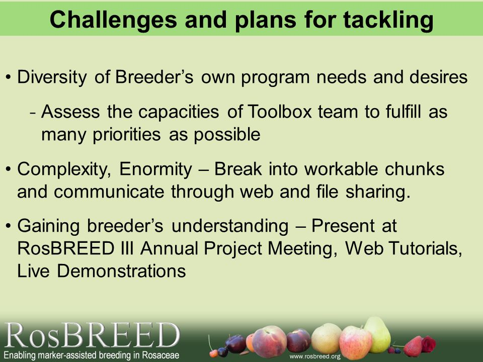 Diversity of Breeder's own program needs and desires - Assess the capacities of Toolbox team to fulfill as many priorities as possible Complexity, Enormity – Break into workable chunks and communicate through web and file sharing.