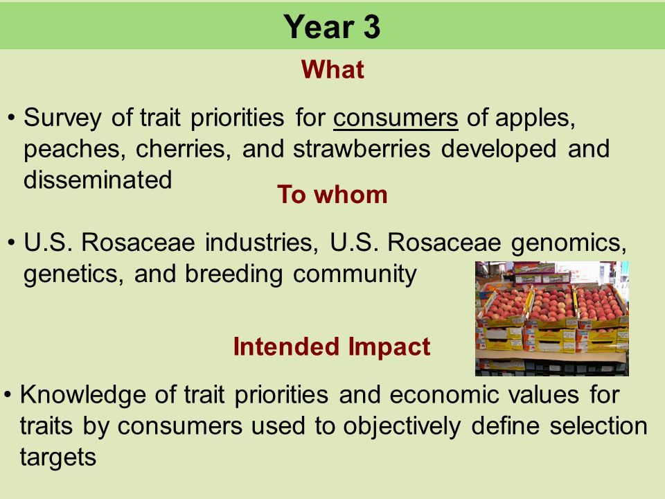 What Survey of trait priorities for consumers of apples, peaches, cherries, and strawberries developed and disseminated To whom U.S.