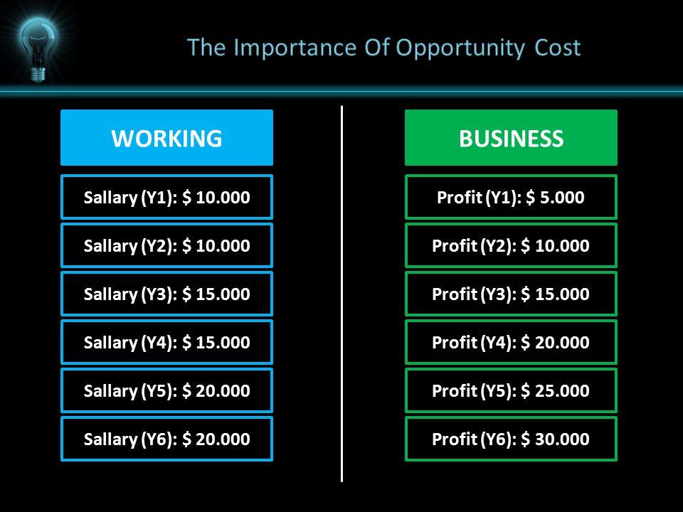 WORKING Sallary (Y1): $ 10.000 BUSINESS Profit (Y1): $ 5.000 Sallary (Y2): $ 10.000Profit (Y2): $ 10.000 Sallary (Y3): $ 15.000Profit (Y3): $ 15.000 Sallary (Y4): $ 15.000Profit (Y4): $ 20.000 Sallary (Y5): $ 20.000Profit (Y5): $ 25.000 Sallary (Y6): $ 20.000Profit (Y6): $ 30.000