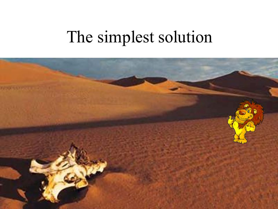 The simplest solution Lion in the desert