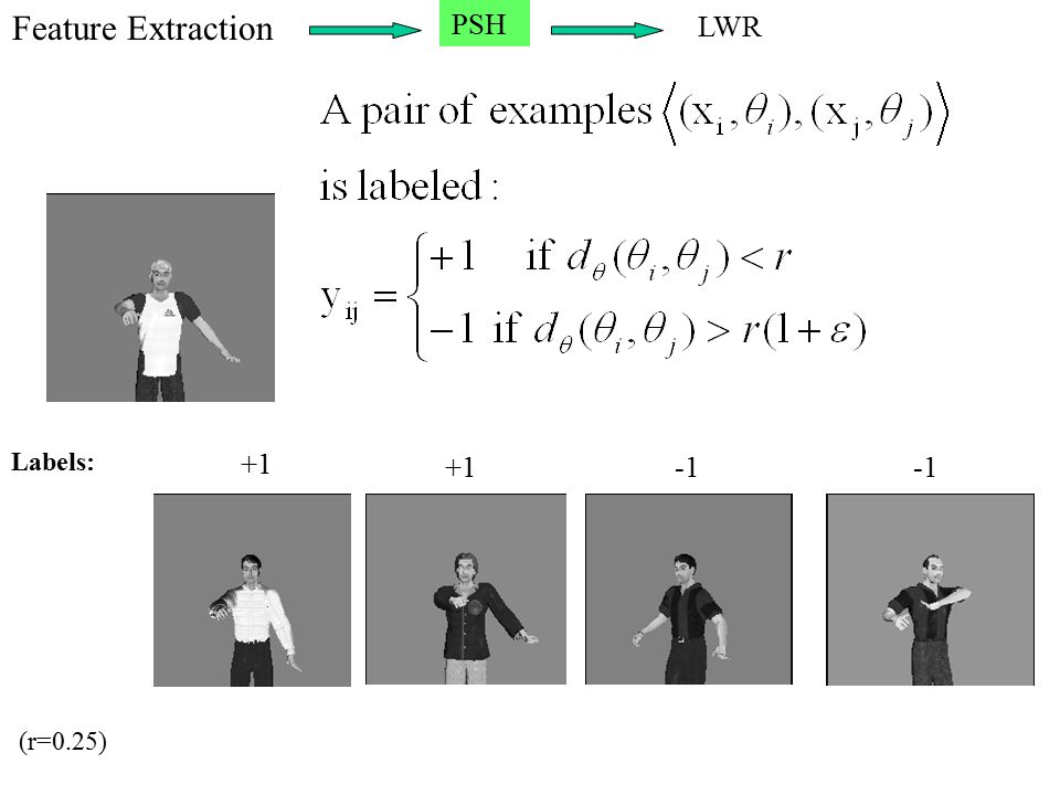 +1 (r=0.25) Labels: Feature Extraction PSH LWR