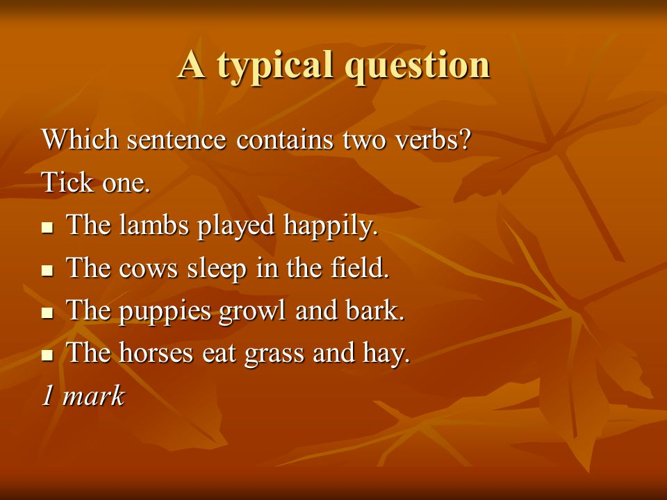 A typical question Which sentence contains two verbs? Tick one. The lambs played happily. The lambs played happily. The cows sleep in the field. The c