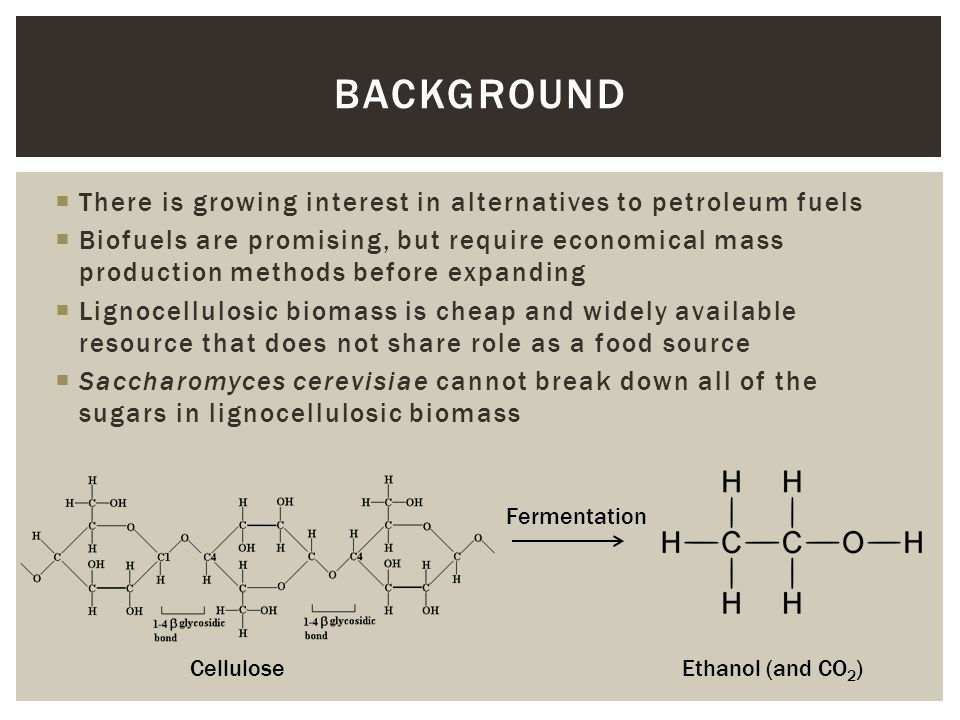  There is growing interest in alternatives to petroleum fuels  Biofuels are promising, but require economical mass production methods before expandi