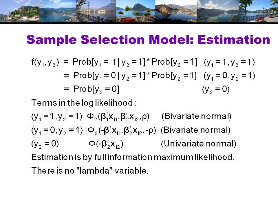 Sample Selection Model: Estimation