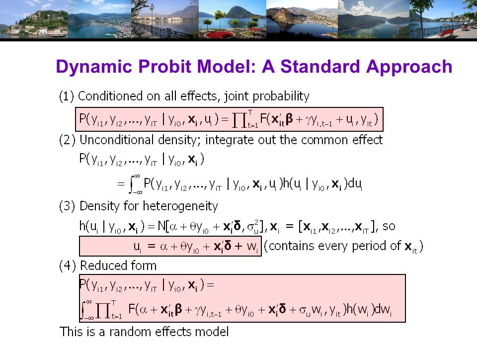 Dynamic Probit Model: A Standard Approach