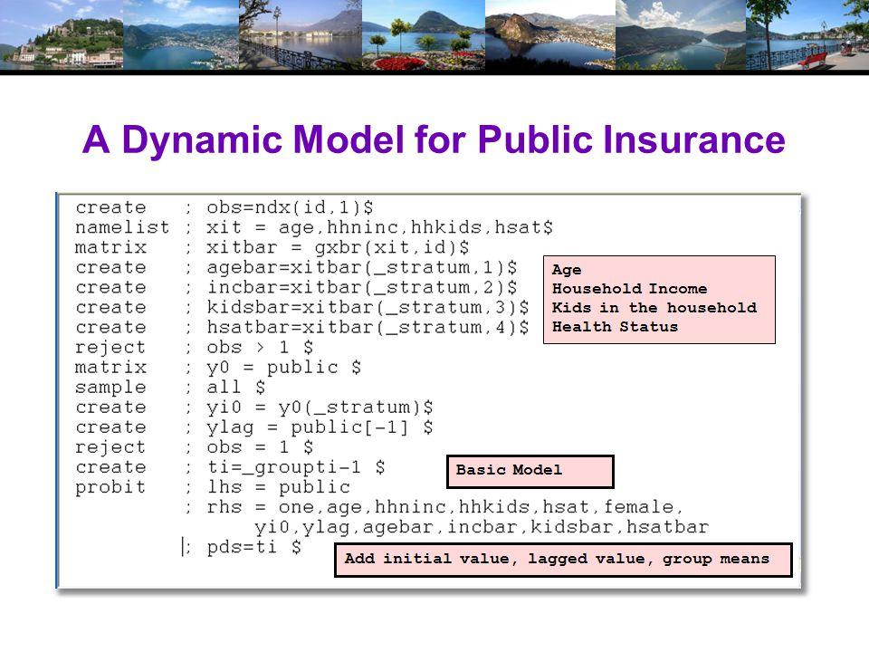 A Dynamic Model for Public Insurance