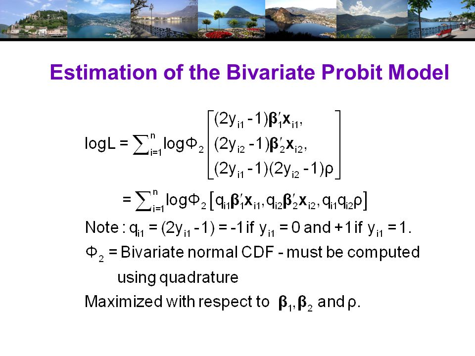 Estimation of the Bivariate Probit Model