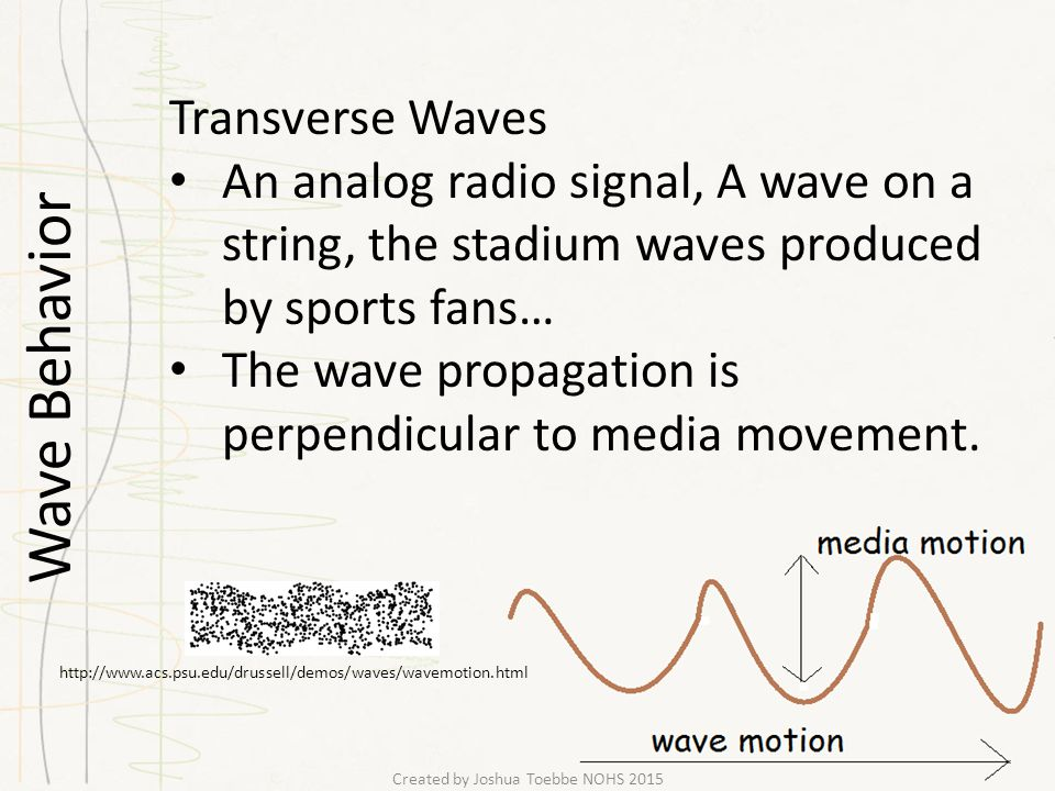 Wave Behavior Transverse Waves An analog radio signal, A wave on a string, the stadium waves produced by sports fans… The wave propagation is perpendicular to media movement.