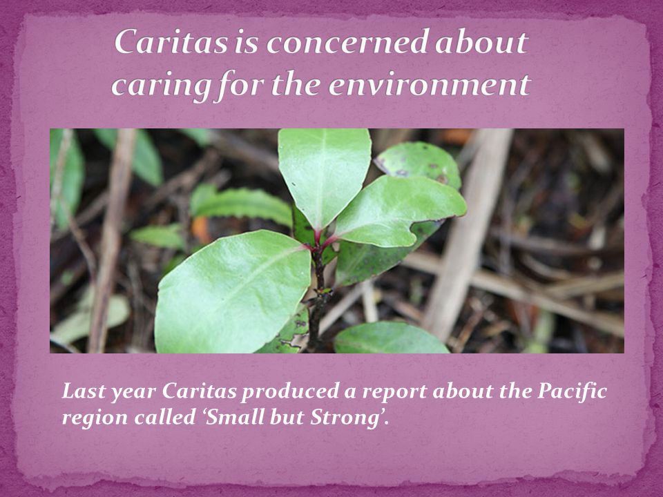 Last year Caritas produced a report about the Pacific region called 'Small but Strong'.