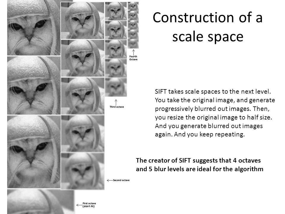 Construction of a scale space SIFT takes scale spaces to the next level. You take the original image, and generate progressively blurred out images. T