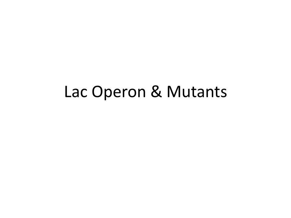 Lac Operon & Mutants