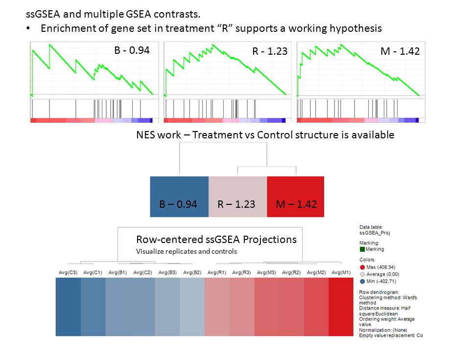 B – 0.94R – 1.23M – 1.42 NES work – Treatment vs Control structure is available Row-centered ssGSEA Projections Visualize replicates and controls B - 0.94 R - 1.23M - 1.42 ssGSEA and multiple GSEA contrasts.
