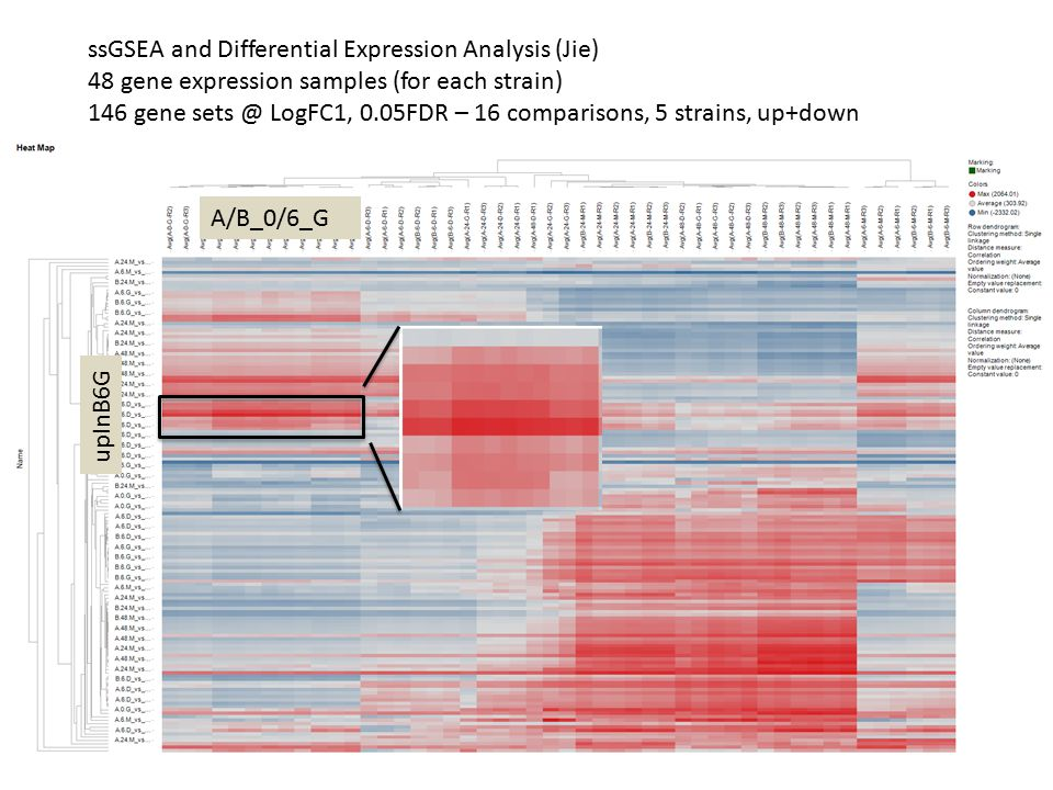 ssGSEA and Differential Expression Analysis (Jie) 48 gene expression samples (for each strain) 146 gene sets @ LogFC1, 0.05FDR – 16 comparisons, 5 str